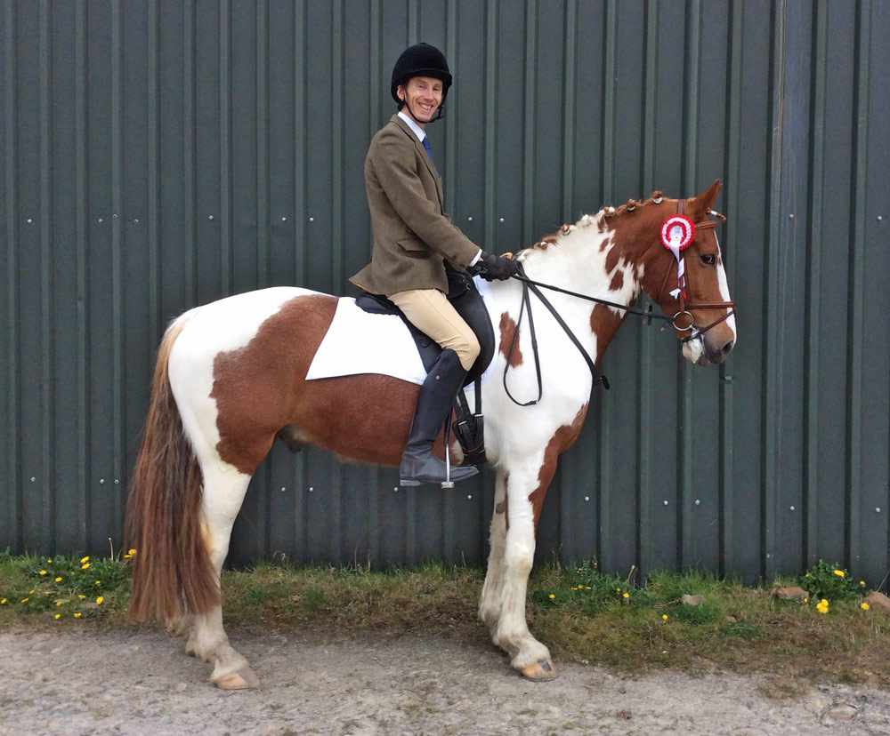 Welsh part-bred, Misun, dressage