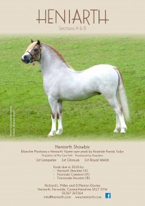 Heniarth Stud WPCS Journal Advert, 2018.